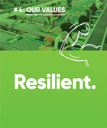 Image of Resilient